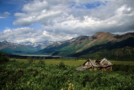 The Goldenzone Homestead, Alaska, 2003