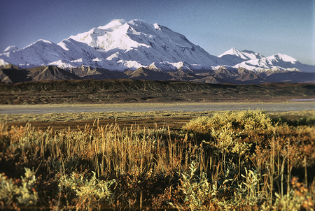 Denali and the Muldrow, (vintage filter) Denali Nat. Park 2006