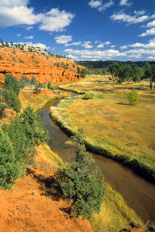 Belle Fouche River, Devils Tower , Wyoming, 2009 image