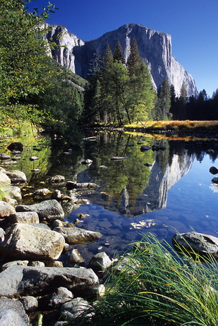 EL Cap Morning Reflection, Yosemite Nat. Park, 2004 image