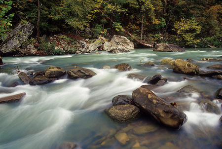 Richland Creek, no.3 2009 image