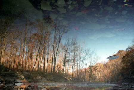 Richland Creek, Upside-Down Reflection 1998