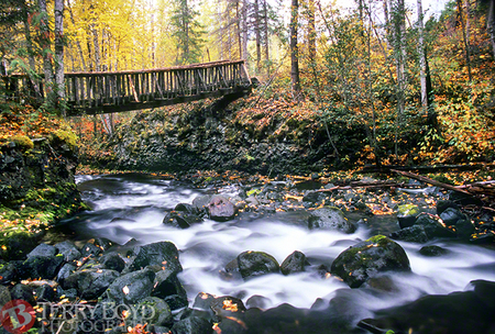 Moul Creek Bridge, Wells Gray Park, British Columbia
