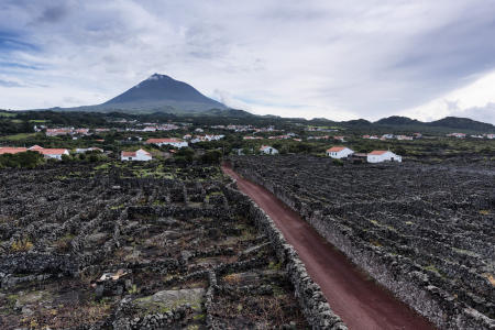 Pico Island Vineyard Culture,UNESCO World Heritage site,